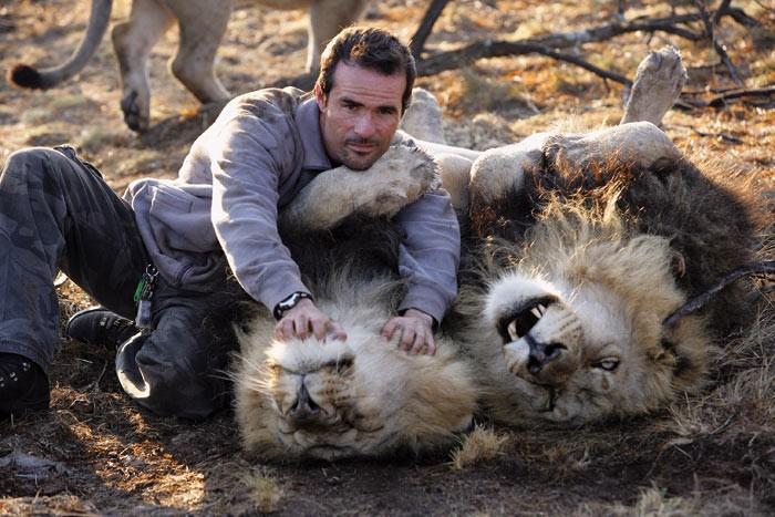 02 lev 99407 Lhomme qui parlait à loreille des lions et lionnes.