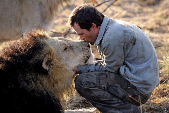 04 lev 61972 Lhomme qui parlait à loreille des lions et lionnes.