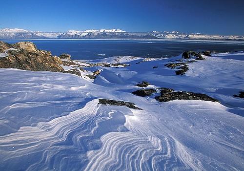 Magnifiques images de l'antarctique - Sa population, ses paysages ! 3