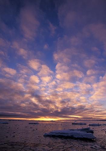 Magnifiques images de l'antarctique - Sa population, ses paysages ! 14