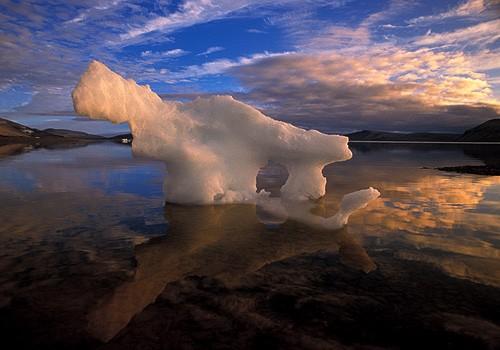 Magnifiques images de l'antarctique - Sa population, ses paysages ! 52
