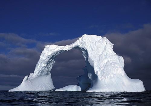 Magnifiques images de l'antarctique - Sa population, ses paysages ! 53