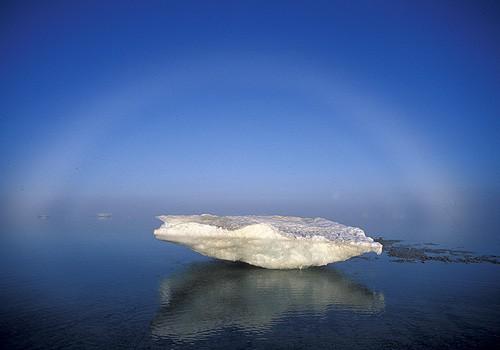 Magnifiques images de l'antarctique - Sa population, ses paysages ! 54