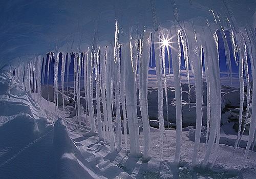 Magnifiques images de l'antarctique - Sa population, ses paysages ! 57
