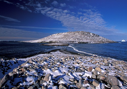 Magnifiques images de l'antarctique - Sa population, ses paysages ! 59