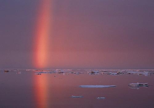 Magnifiques images de l'antarctique - Sa population, ses paysages ! 92